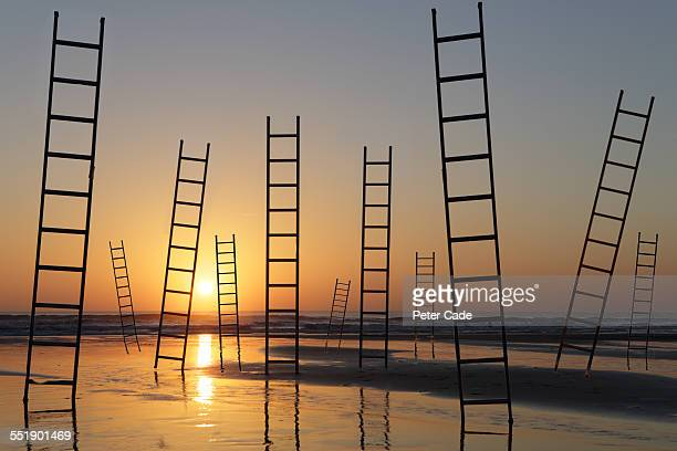 lots of ladders at sunset on beach .