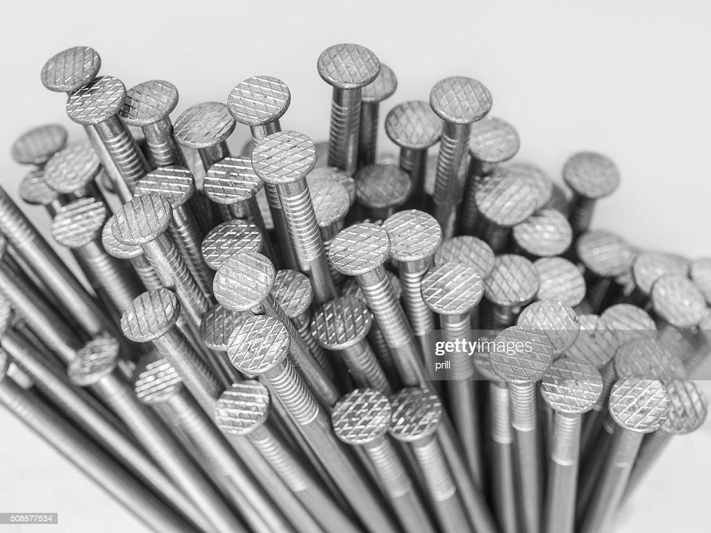 lots of nails : Bildbanksbilder