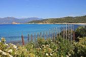 Lotu beach, Corsica