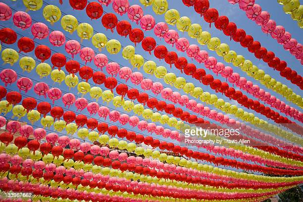 Lotus lanterns against sky