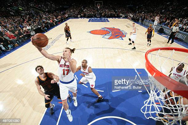 Lou Amundson of the New York Knicks grabs the rebound against the Cleveland Cavaliers on November 13 2015 at Madison Square Garden in New York City...