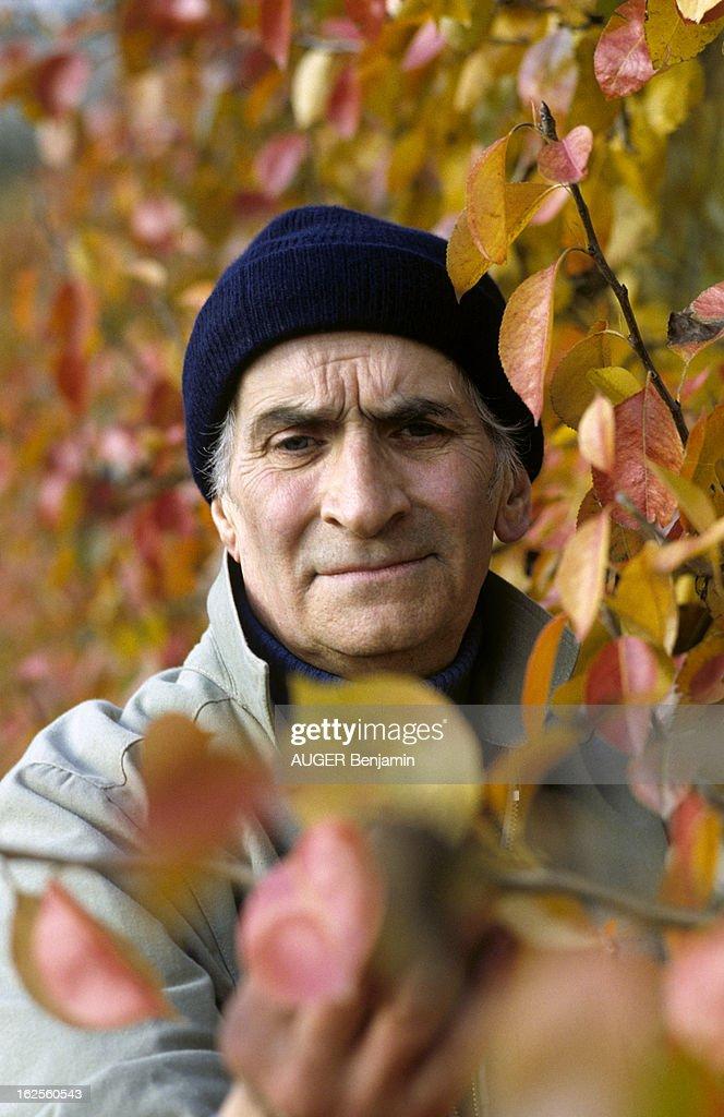 Louis de funes getty images for Bruler dans son jardin