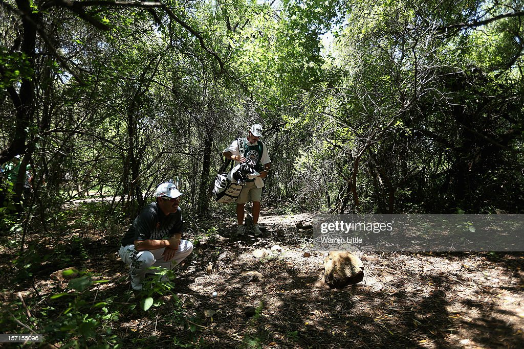 Louis Oosthuizen of South Africa peers through the bush before play his shot during the first round of the Nedbank Golf Challenge at the Gary Player Country Club on November 29, 2012 in Sun City, South Africa.