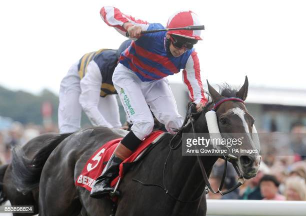 Louis Steward riding Mutual Regard celebrates as he wins the Betfred Ebor on Betfred Ebor Day during Day Four of the 2014 Welcome To Yorkshire Ebor...