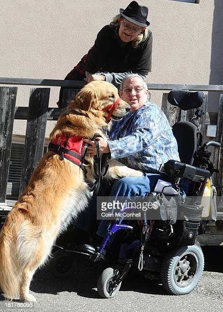 TORONTO ON SEPTEMBER 24 Louise Bark and her service dog Bruce a golden retriever were denied service at a North York Pizzaiolo September 24 2013...