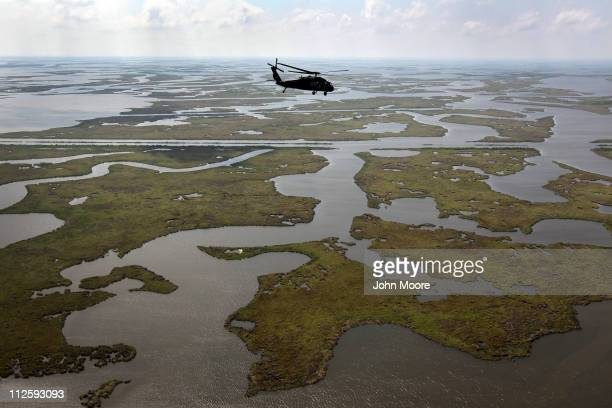 Louisiana National Guard blackhawk flies over marshland on April 19 2011 in route to Middle Ground in southern Louisiana A year after the BP oil...