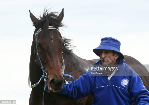 Lovani after winning TAB/ATA Trainersâ Trust Handicapat Flemington Racecourse on July 22 2017 in Flemington Australia