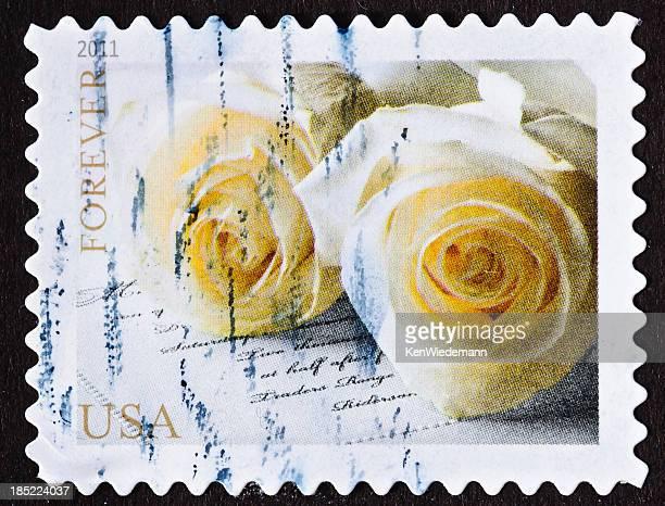 Love Stempel mit weißen Rosen