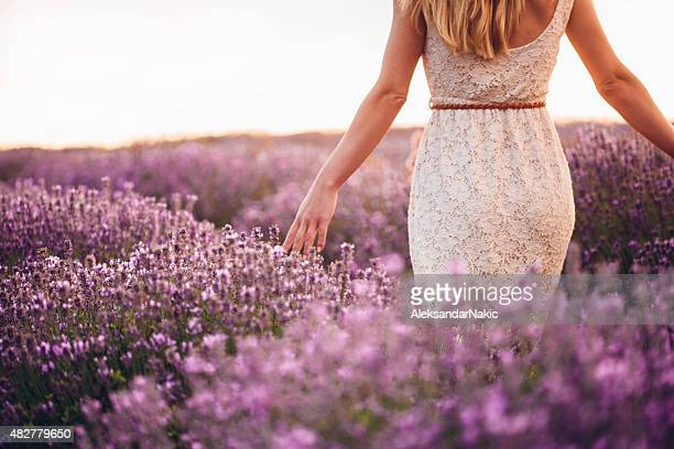 Lovely lavender field