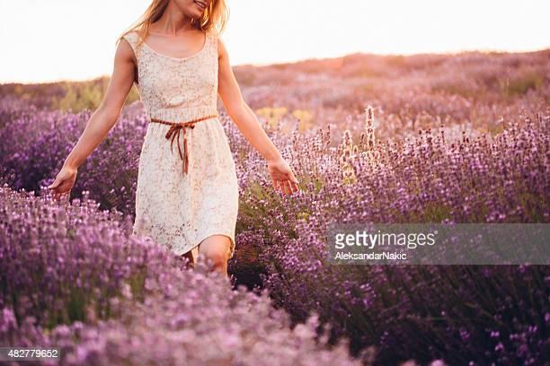 Schöne Lavendel Feld