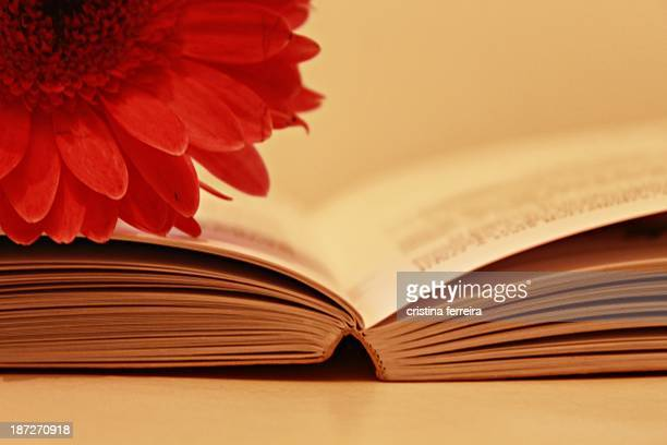 Lover of books and flowers