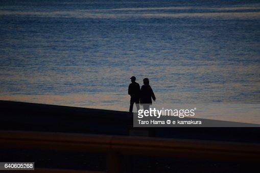Lovers walking on sunset beach : ストックフォト
