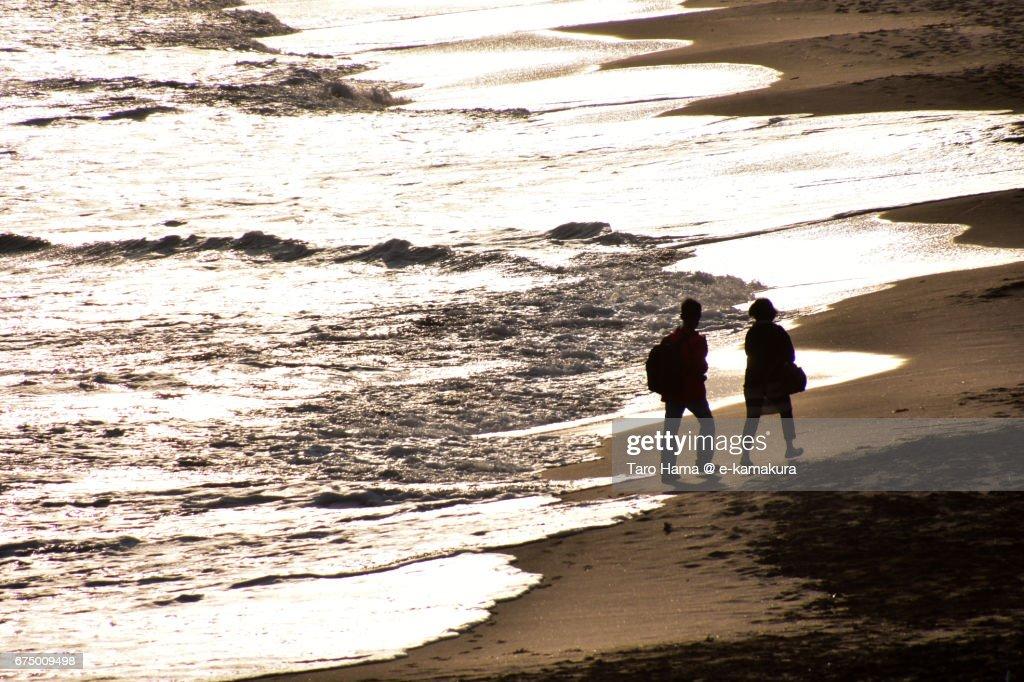 Lovers walking on the sunset beach : ストックフォト