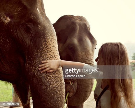 Loving elephants