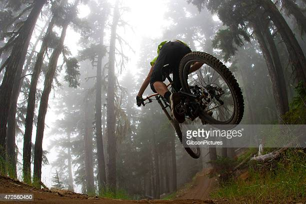Low angle photo of mountain biker jumping in forest