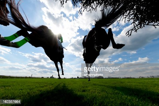 Low angle view Horse Racing Steeplechase jumping