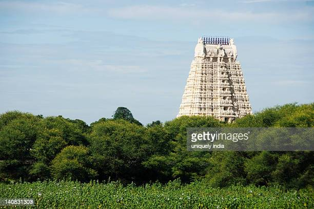 Low angle view of a temple, Tirumala Venkateswara Temple, Tirupati, Andhra Pradesh, India