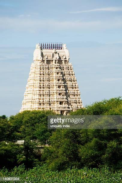 Low angle view of a temple, Tirumala Venkateswara Temple, Tirupati, Andhra Pradesh, India