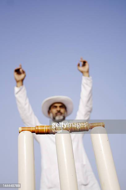 Low angle view of an umpire standing behind the stumps