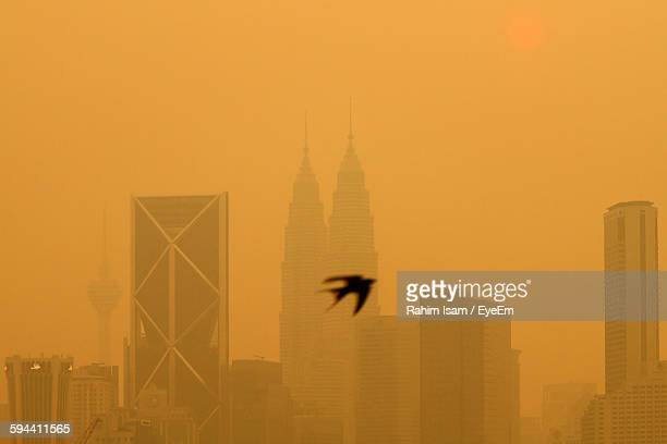Low Angle View Of Bird Flying By Cityscape Against Sky
