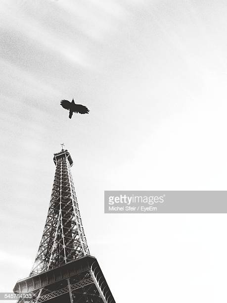 Low Angle View Of Bird Flying By Eiffel Tower Against Sky