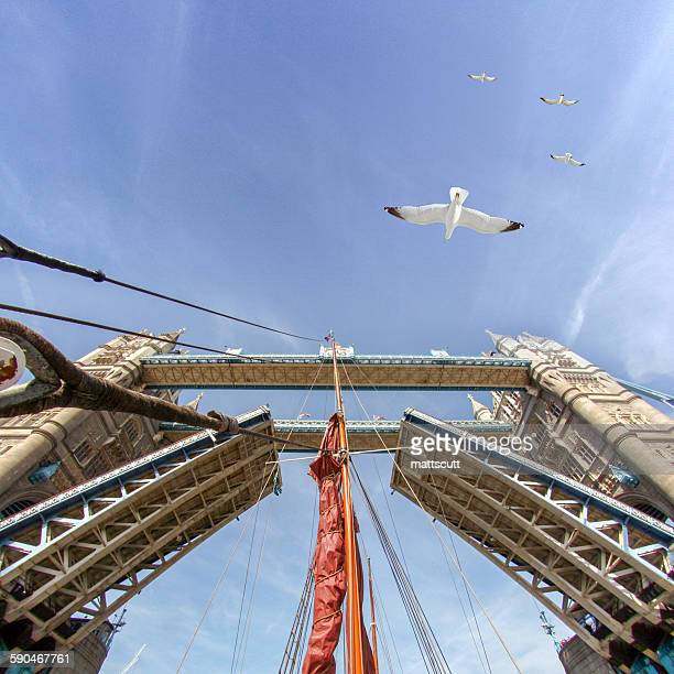 Low angle view of boat mast sailing under raised tower bridge, London, England