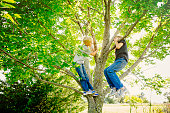 Low angle view of Caucasian boys climbing tree