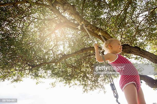 Low angle view of female toddler standing on tree swing