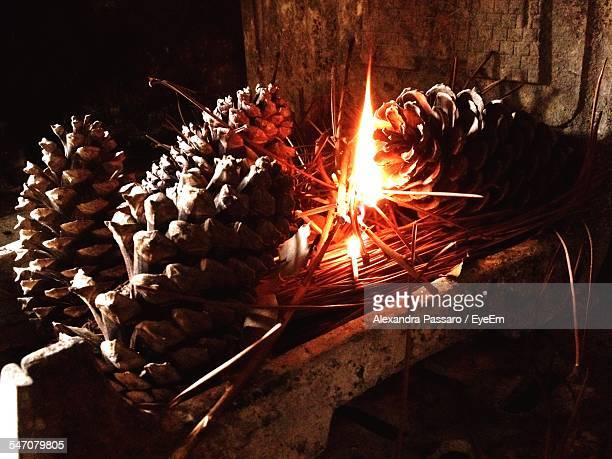Low Angle View Of Fire Burning Amidst Pine Cones At Night