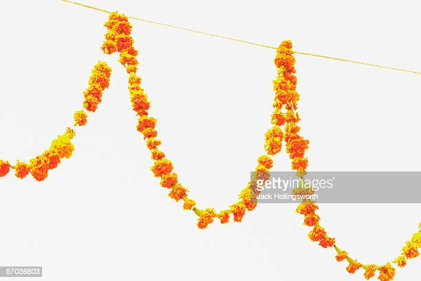 Low angle view of garland hanging on a string