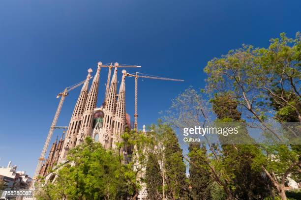 Low angle view of Gaudi's Sagrada Familia spires and construction cranes against blue sky