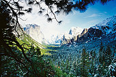 Low angle view of Half Dome, Yosemite National Park, Mariposa County, California, USA