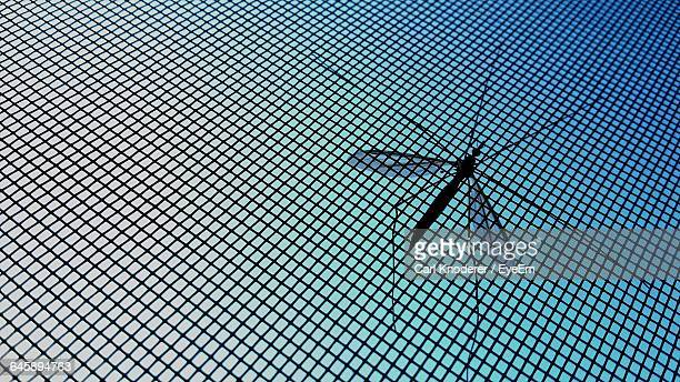 Low Angle View Of Mosquito On Net Against Sky On Sunny Day
