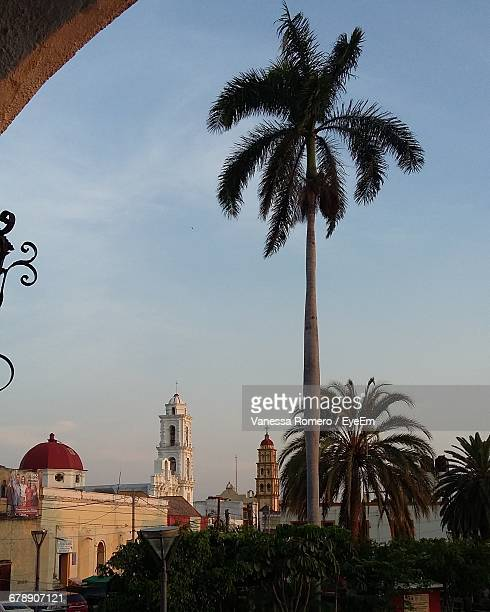 Low Angle View Of Palm Trees By Church Against Sky