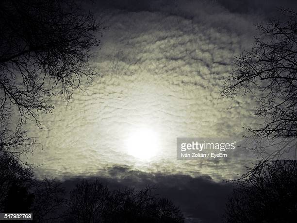 Low Angle View Of Silhouette Bare Trees Against Cloudy Sky