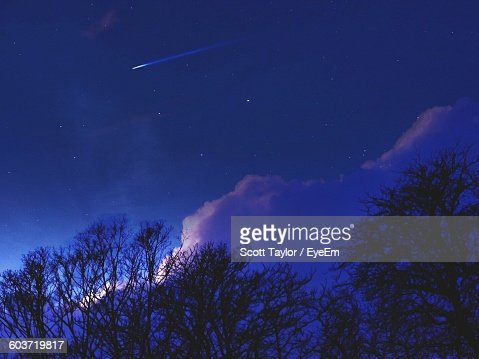 Low Angle View Of Silhouette Bare Trees Against Sky At Night