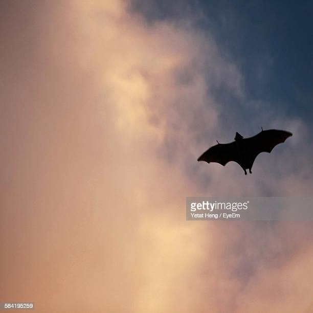 Low Angle View Of Silhouette Bat Flying Against Cloudy Sky