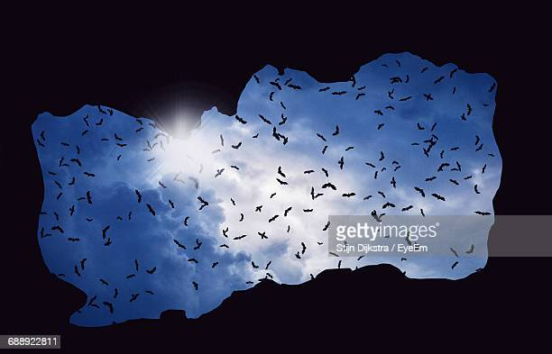 Low Angle View Of Silhouette Bats Flying Against Sky Seen Through Cave