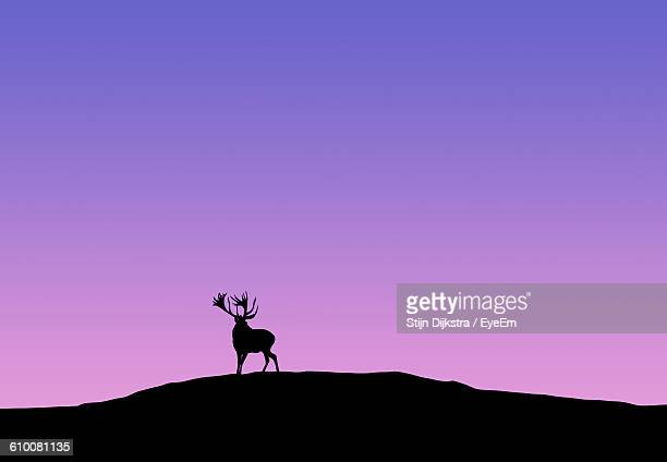 Low Angle View Of Silhouette Deer On Mountain Against Clear Sky During Sunset