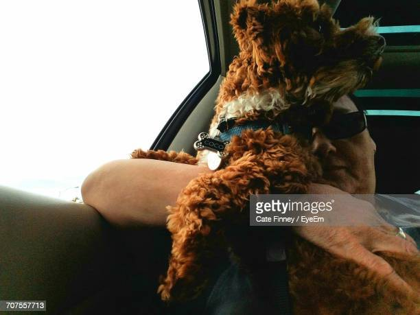 Low Angle View Of Woman With Dog In Car