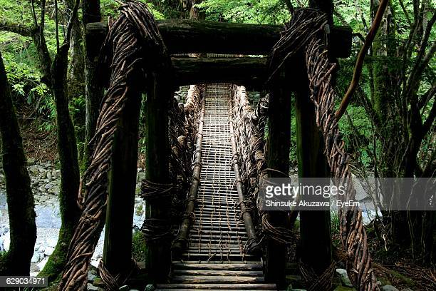 Low Angle View Of Wooden Bridge In Forest