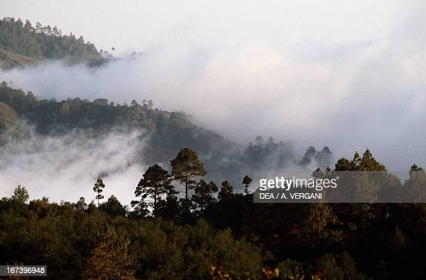 Low clouds around Solola Sierra Madre Guatemala