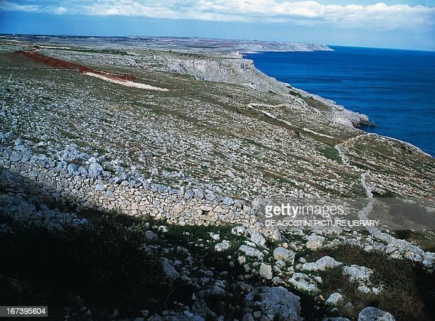 Low rocky coast towards Castro Marina Salento Apulia Italy