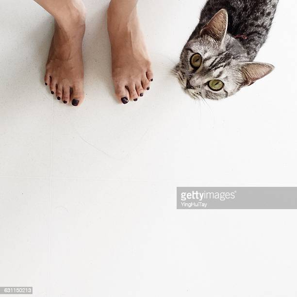 Low section of a woman standing next to a cat