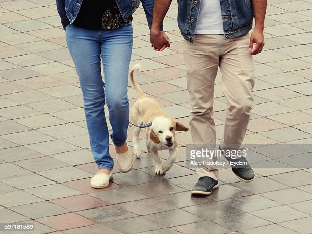 Low Section Of Couple With Dog Walking On Street