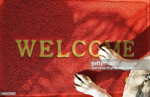 Low Section Of Dog On Welcome Sign