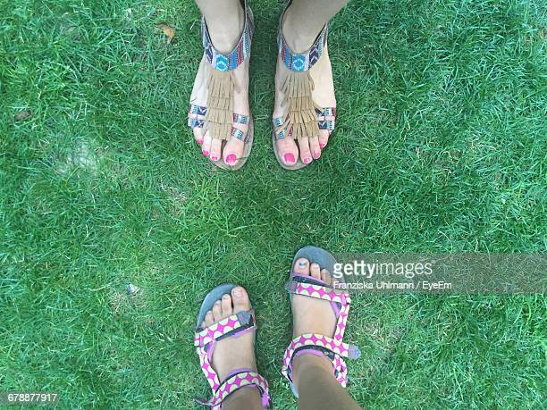 Low Section Of Friends Standing On Grassy Field