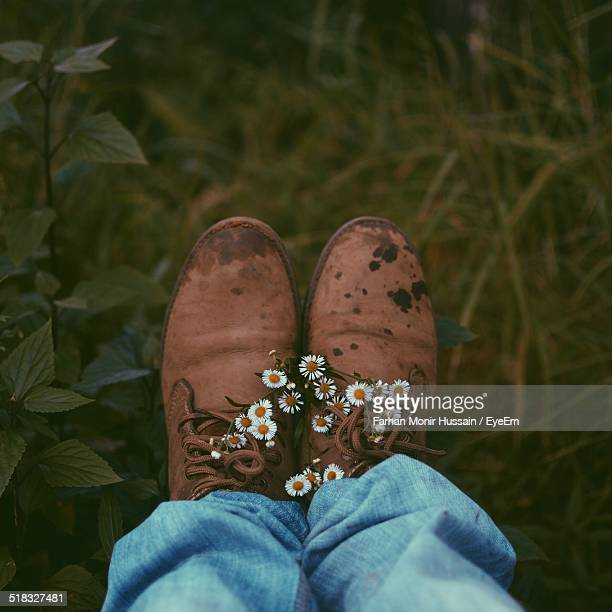 Low Section Of Man Leg With Daisy Flowers On Shoes