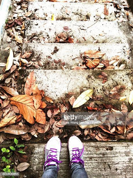 Low Section Of Person Standing On Steps With Dry Autumn Leaves