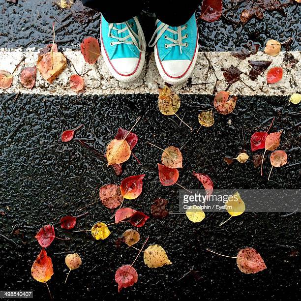 Low section of person with autumn leaves on wet street